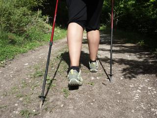 Nordic walking outdoor
