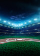 Professional baseball grand arena in night - 78761753