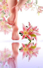 Female feet and Pink lily with reflection in water