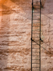 Ladder on top