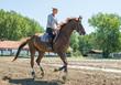 Riding horse - 78766189