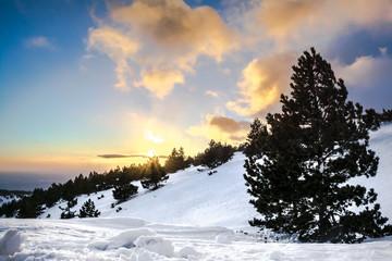couché de soleil sur la neige
