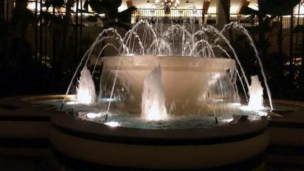 fountain stream in night tropical park