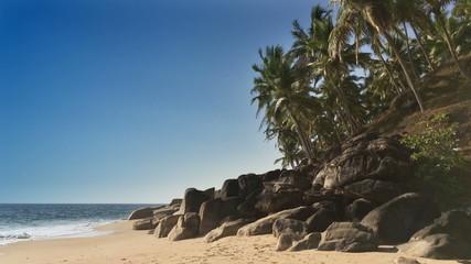 The seashore with stones and palm trees. India. Kerala