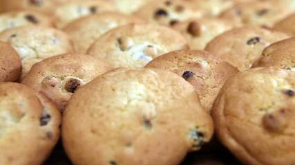 Cookies biscuit with raisin