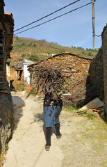 Senior woman carrying firewood, Hurdes, Cáceres, Spain