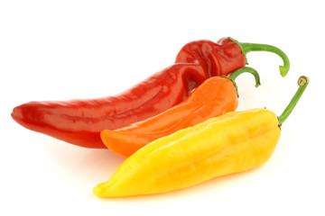 red,yellow and orange sweet pepper (capsicum) on a white backgro