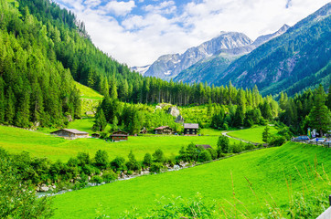 Beautiful green alpine landscape, Zillertal  Alps, Austria