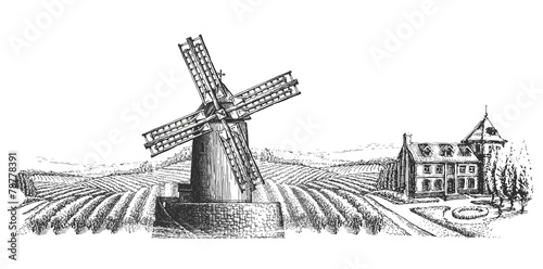 windmill vector logo design template. harvest or village icon. - 78778391