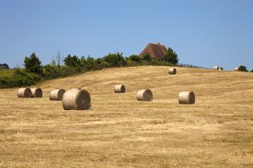 France,campagna,covoni di fieno.