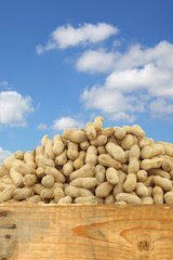 roasted peanuts in a wooden box against a blue sky