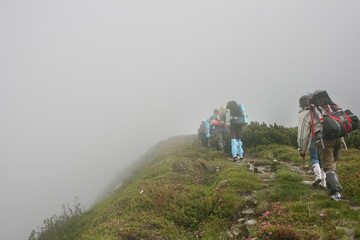 Group of hikers walking in mountains