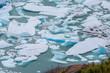 Glacier Perito Moreno en Patagonie - 78787139