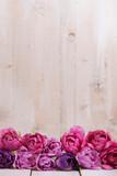 Pinke Tulpen in Reihe