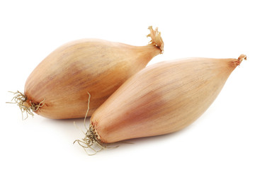 two fresh shallots on a white background