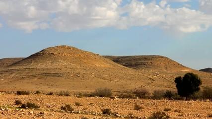 Negev desert at the spring on blue sky background, Israel