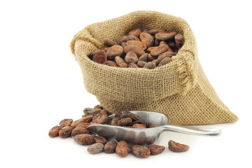 cocoa beans in a burlap bag on a white background