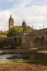 Catedral de Salamanca y río Tomes con puente romano.