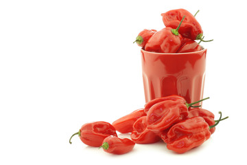 spicy hot red adjuma peppers in a red ceramic mug on a white bac