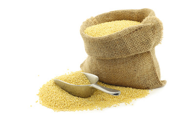 Millet in a burlap bag on a white background