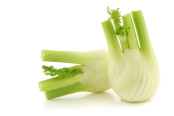 fresh fennel on a white background
