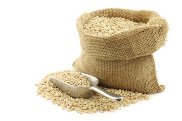 raw organic barley in a burlap bag with an aluminum scoop on a w
