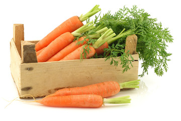 freshly harvested bunch of carrots in a wooden box on a white ba