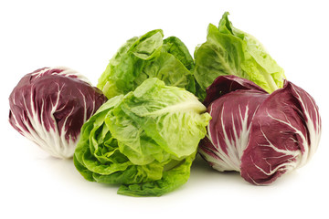 "red ""radicchio"" lettuce and green ""little gem""lettuce on a white"