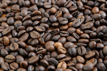 Coffee beans detail