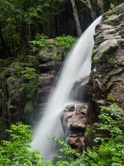 Alongside Avalanche Falls