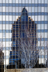 Tall Building Reflection In Windows Of Another