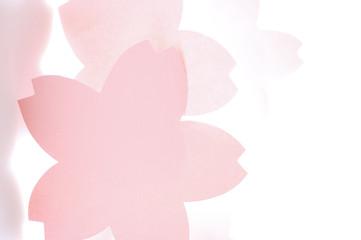 桜のメッセージカード パンチ穴無タイプ
