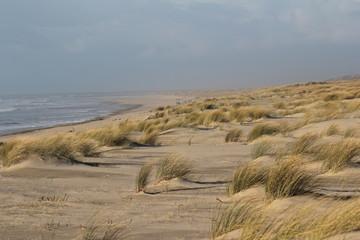 dune atlantique