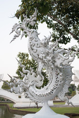 Fish in Wat Rong Khun (White Temple)