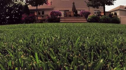 Yard chores cutting lawn with grass mower