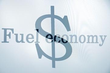 "Inscription ""Fuel economy"" & dollar sign on pc screen."