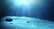 Underwater Sea Floor - 78801531