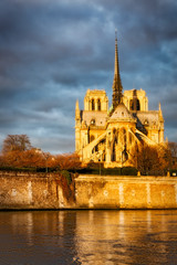 Paris view of the Notre Dame Cathedral lit by the morning sun, a