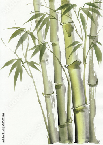 Deurstickers Palm boom Watercolor painting of bamboo