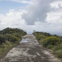 strada selvaggia