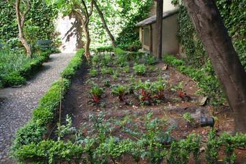 Jardin Casa Lope de Vega