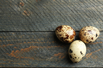 Bird eggs on wooden background