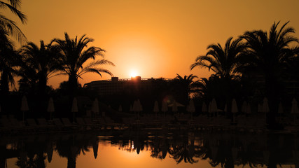 Orange Sunset With Palm Trees and Sun Reflection on Water