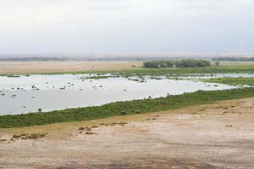Etang sur la plaine d'Amboseli