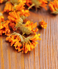 Calendula dried flowers (Calendula officinalis) on a wooden