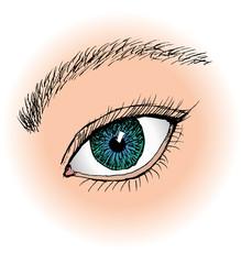 One single blue eye