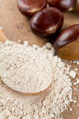 chestnut flour in a wooden spoon