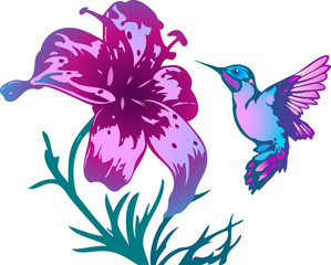 tropical hummingbird and flowers