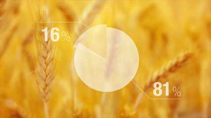 Animated Chart For Wheat Yield in Agricultural cultivated field.