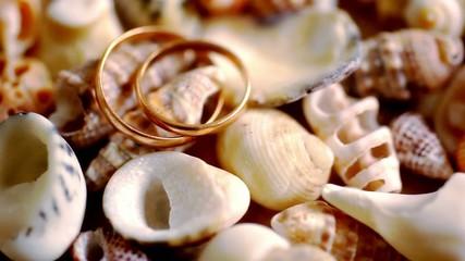Close up golden wedding rings on shells. Macro video shift